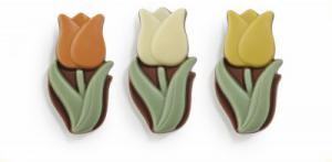 Chocolade Tulpen assorti (melk)