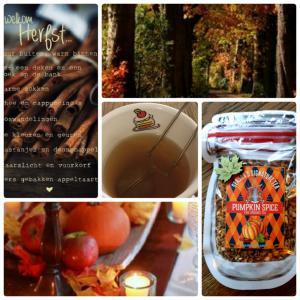 Herfst thee - Pumpkin