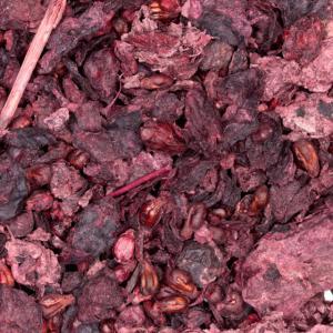 Wijndruivenpulp thee 50-gram