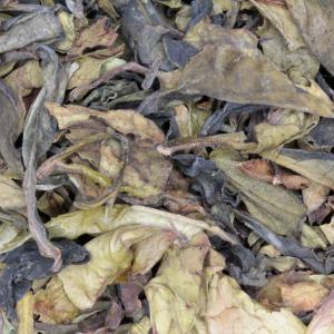 Bai Mu Dan  thee 50-gram  (biologische).