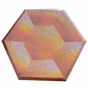 Kartonnen bordjes Holografisch Rose 6-hoekig Ø26cm