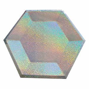 Kartonnen bordjes Holografisch Zilver 6-hoekig Ø26cm