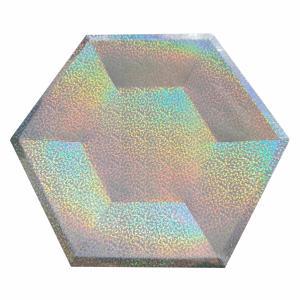 Kartonnen bordjes Holografisch Zilver 6-hoekig Ø23cm