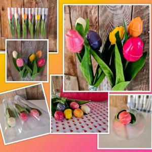 Chocolade tulp diverse kleuren in een koker. Prijs is per stuk.