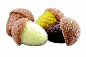 Herfst chocolade praline eikeltjes in vier verschillende kleuren  100 gram