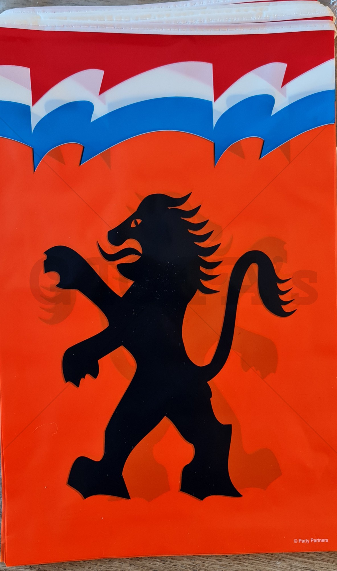 Vlaggenlijn Holland met leeuw 10 meter